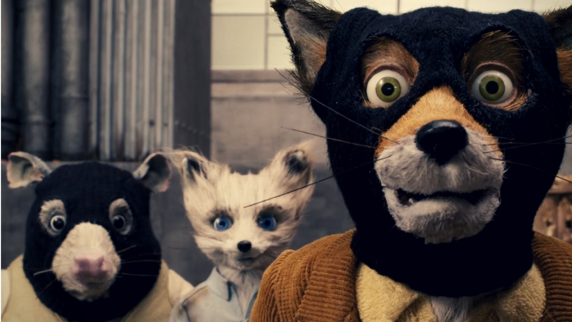 fantastic mr fox are you cussing with me quote