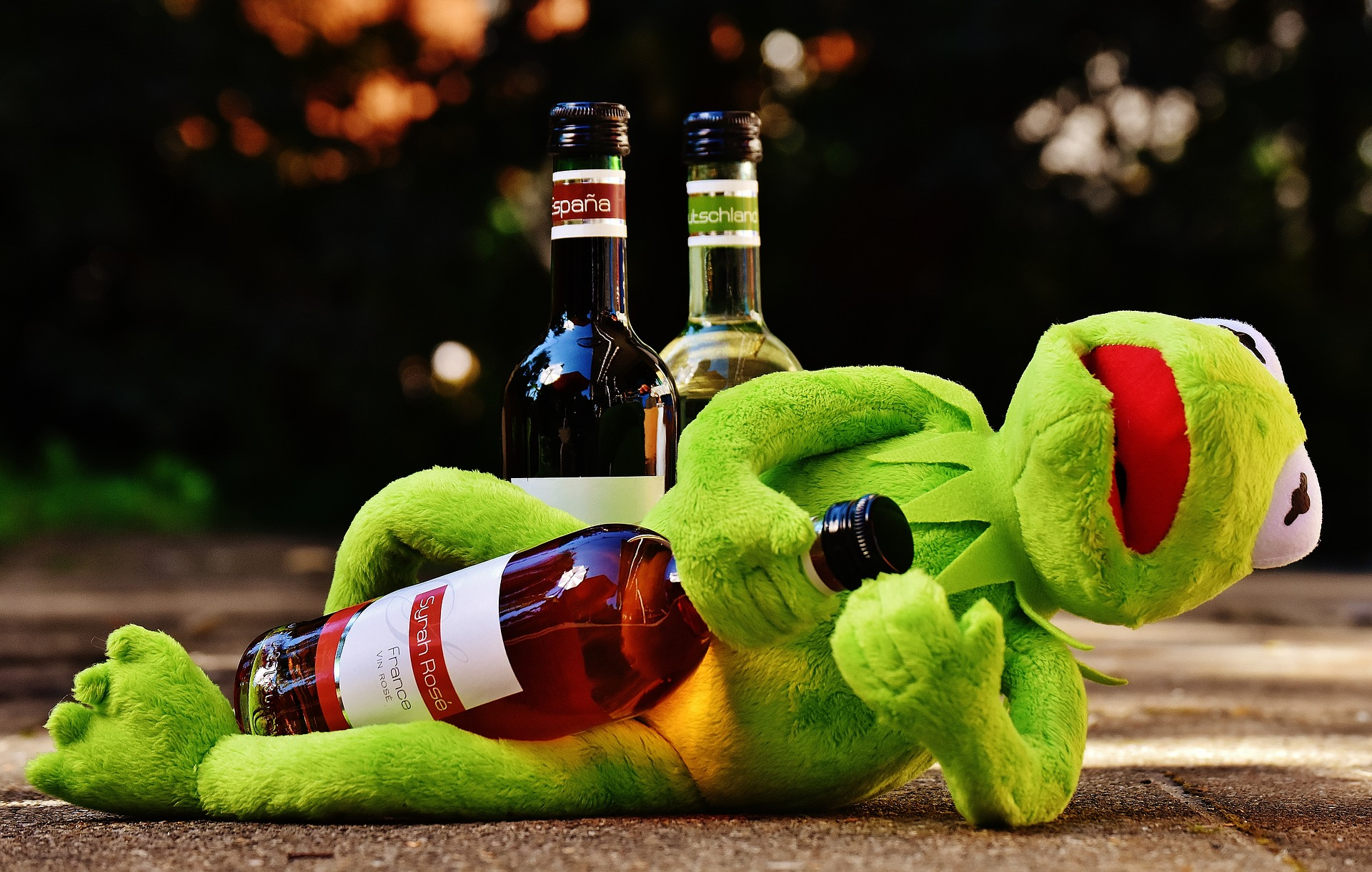 kermit drunk with alcohol